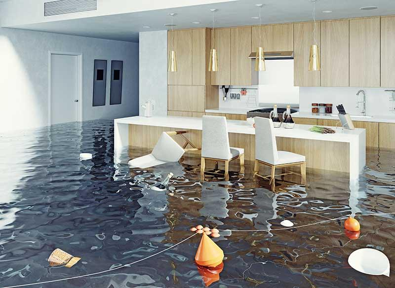 Water damage restoration- What is the process of restoring damage done by the water in the house?